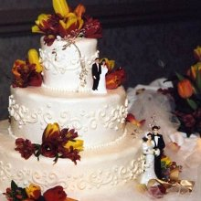 220x220 sq 1340290128822 weddingcake2