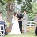 130x130 sq 1453826102448 oak tree wedding site