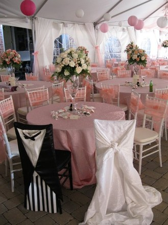 Fairfax wedding rentals reviews for rentals a grand event party rentals junglespirit Choice Image