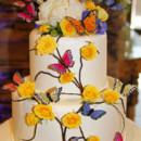 130x130 sq 1368546943070 cake top 1