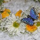 130x130 sq 1375239856807 flowergirl halo detail