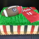 130x130 sq 1454612032032 carolina gamecock football cake