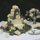 130x130 sq 1281631771338 weddingcake6c