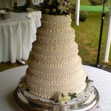 220x220 sq 1281631750791 weddingcake2a