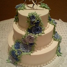 220x220 sq 1281631759494 weddingcake2b
