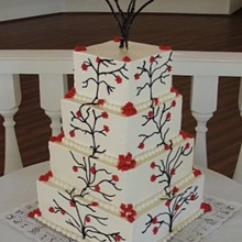 220x220 sq 1281631760525 weddingcake3b