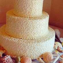 220x220 sq 1281631763557 weddingcake5b