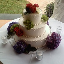 220x220 sq 1281631766588 weddingcake2c