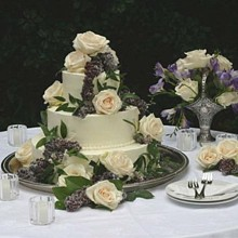 220x220 sq 1281631771338 weddingcake6c