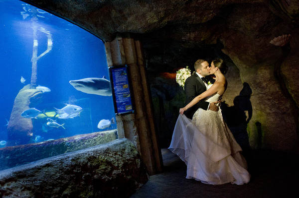 Atlantis banquets events riverhead ny wedding venue for Shark tank wedding dress