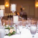 130x130 sq 1477932740989 stellar exposures jenn and lenny wedding blush les