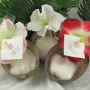130x130 sq 1213581443684 coconutbathpowder