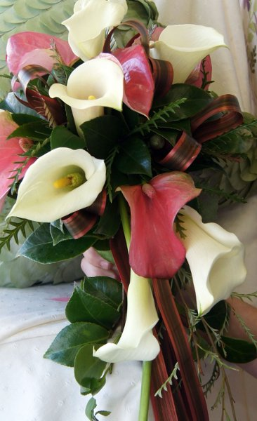 photo 5 of Soderberg's Floral & Gift