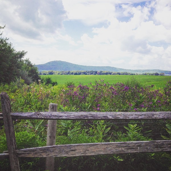 600x600 1474575099203 sugarloaf ig view