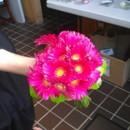 130x130 sq 1375665302493 besley gerbera toss bouquet