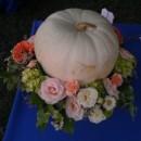 130x130 sq 1381113171427 tudor place pumpkin