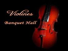 220x220 1303947606827 violinesbanquethallcopy
