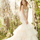 Jim Hjelm  <br />Ivory over Champagne Charmeuse Tulle bridal gown, strapless beaded Alencon lace elongated bodice, circular tiered tulle skirt with beaded appliques, chapel train  <br /> 8302