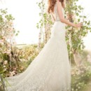 Style jh8402  <br /> Celedon/Champagne Chantilly lace Fit and Flare bridal gown, V-neckline front and back, crystal Celedon ribbon belt at natural waist, chapel train