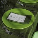 130x130 sq 1359575939273 greendisplaywithaccentchargers