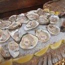 130x130 sq 1359576314382 oystersinrawbar