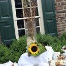 130x130 sq 1359578269982 sunflowerbuffettable