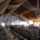 130x130 sq 1315545182323 tiwedding
