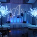 glow trees/bar and white furniture
