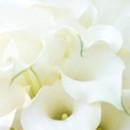 130x130 sq 1451588132830 bouquets tiles