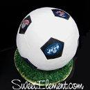 130x130 sq 1332535546305 soccerballgroomscake3