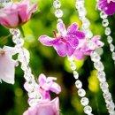 130x130_sq_1315942595938-flowercrystals
