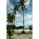 130x130 sq 1338926774929 beach3