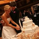 130x130 sq 1317660513820 seashellweddingcake3