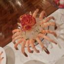 130x130 sq 1431127873473 jumbo shrimp