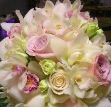 220x220 1222808526136 portfolio.debbied.flowersupclose
