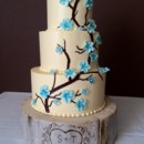 130x130 sq 1456867823527 copy of turquoise cherry blossom cake