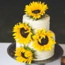 130x130 sq 1472175688624 rustic sunflower cake