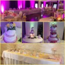 130x130 sq 1417900319556 pink and yellow wedding