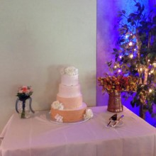220x220 sq 1417899821130 cake table
