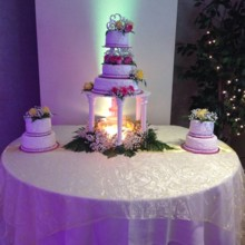 220x220 sq 1417900313401 gorgeous cake