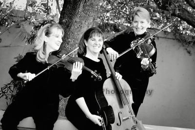 photo 1 of Allegro Quartet
