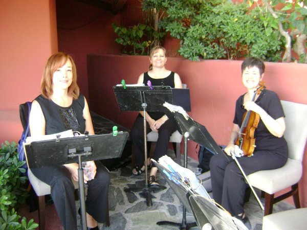 photo 10 of Allegro Quartet