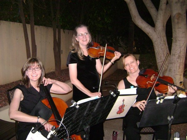 photo 11 of Allegro Quartet