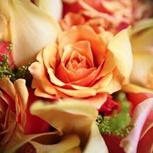 220x220 sq 1199573587519 flowers