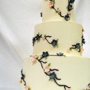 130x130_sq_1402782905948-wedding-cake-3-tot-cherry-blossom-buttercream-pink
