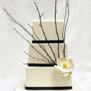 130x130 sq 1470857278452 3tot white  black fondant twig  flower wedding cak