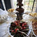 An elegant, yet fun, Chocolate Fountain buffet with a variety of sides such as marshmallows, bananas, strawberries, pretzels & pound cake!