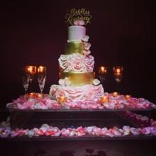 220x220 sq 1432847410543 gulfstream cake grand 2014