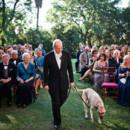 130x130 sq 1452375498681 old hollywood wedding dog as best man