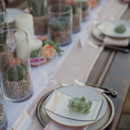 130x130 sq 1390610448098 mexican tablescape succulent centerpiece with cand